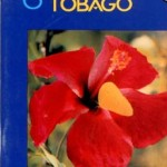 Discover Trinidad & Tobago Travel Guide Issue 2 (1992)