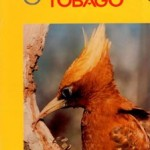 Discover Trinidad & Tobago Travel Guide Issue 4 (1993)