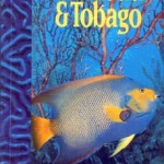 Discover Trinidad & Tobago Travel Guide Issue 8 (1997)