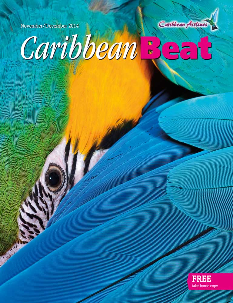 Caribbean Beat cover November/December 2014