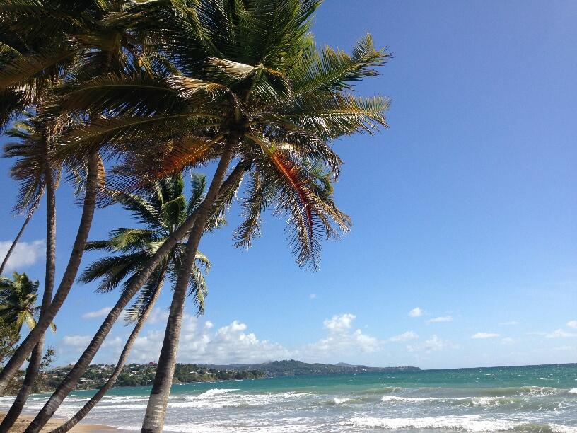 Courtest Tobago Sea to Sea Marathon